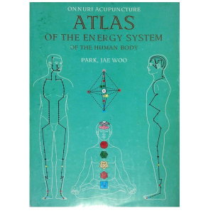 Atlas of Human Energy System